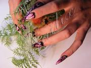 Курсы по наращиванию ногтей Nailix