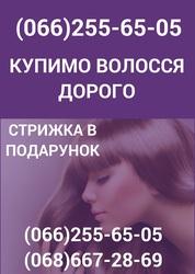 Скупка волос в Харькове Продать волосы в Харькове Куплю волосы дорого
