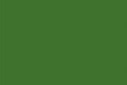 ДСП в деталях Папортник зелёный U650 ST9 Egger