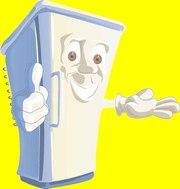 Ремонт холодильников,  заправка фреона